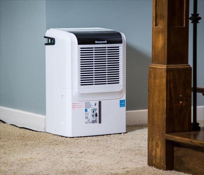 image of residential dehumidifier in a basement