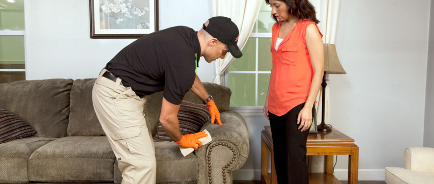 Canfield, OH carpet upholstery cleaning