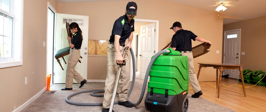 Canfield, OH cleaning services